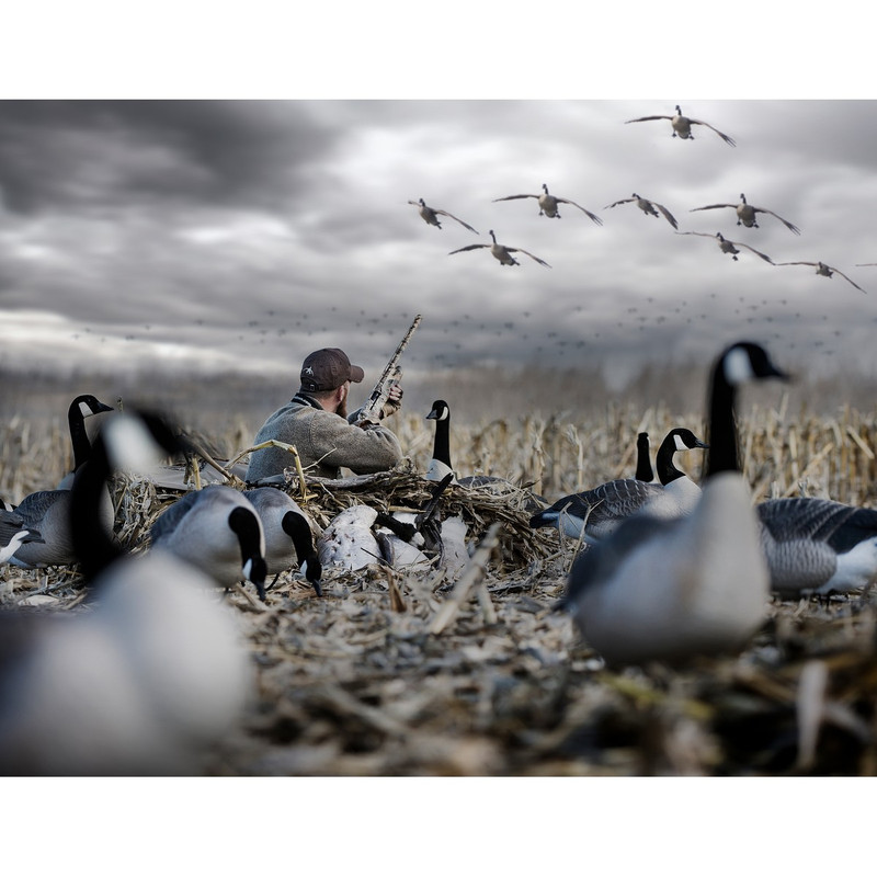 Rig 'Em Right Low Rider 3.0 Layout Blind in Waterfowl Marsh Color