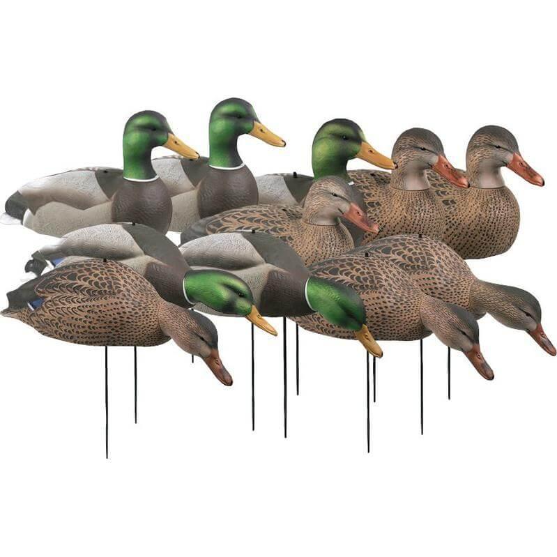 Ghg Mallard Decoys Essential Series 12 Pack Hunt