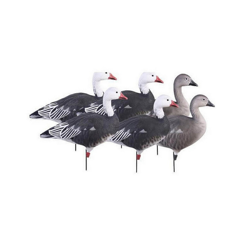 GHG Pro-Grade Full Body Blue Goose Decoys - 6 Pack in Blue_Active