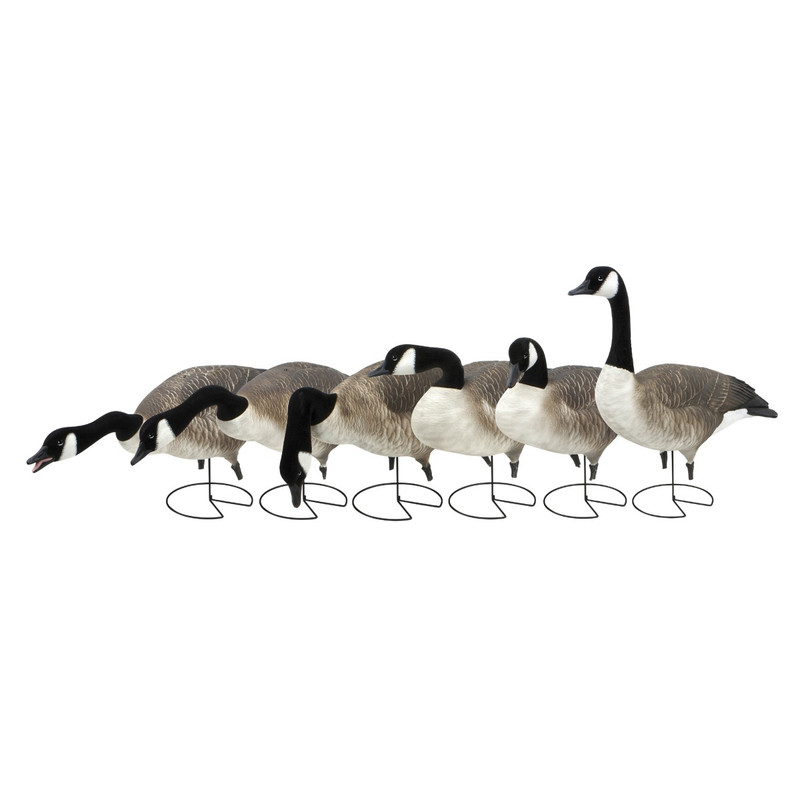 GHG Pro-Grade FFD Full Body Honkers - 6 Pack in HARVESTER