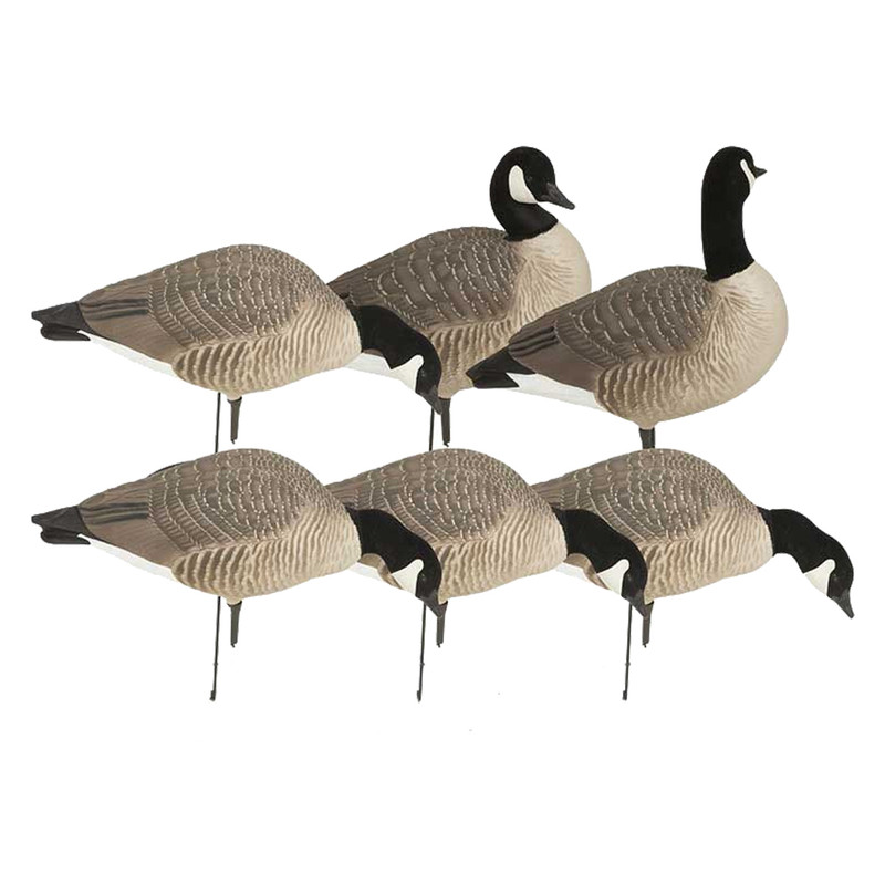 GHG Hunter Series Goose Decoys - 6 Pack in Harvester Item Style