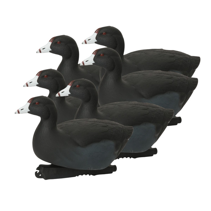 GHG Over Size Coot Duck Decoys 6 Pack