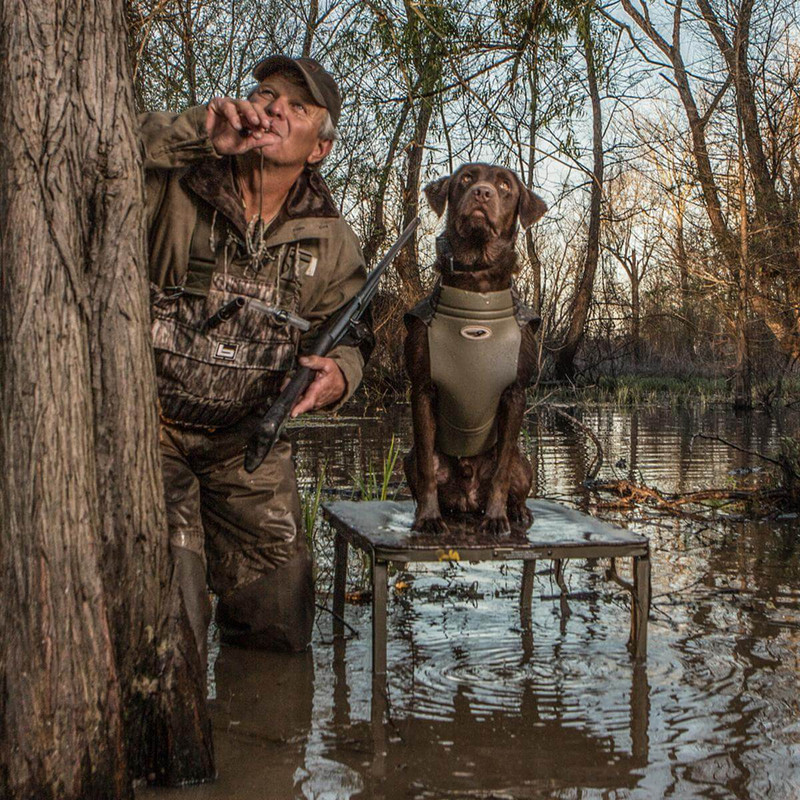 Banded Ruff Dog Stand in Mossy Oak Bottomland Color