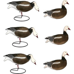 Dakota Decoys Migration Series Full Body Blue Goose Decoys 6 Pack