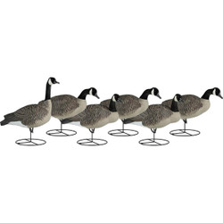 Dakota Decoys 1 Piece Full Body Upright Canada Goose Decoys 6 Pack