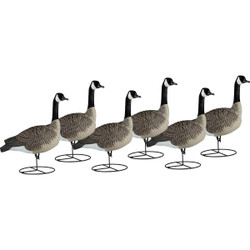 Dakota Decoy 1-Piece Canada Full Body Sentry Goose Decoys - 6 Pack