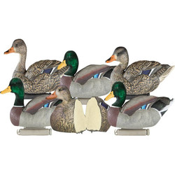Dakota X-Treme Foam Filled Mallards Decoys - 6 Pack