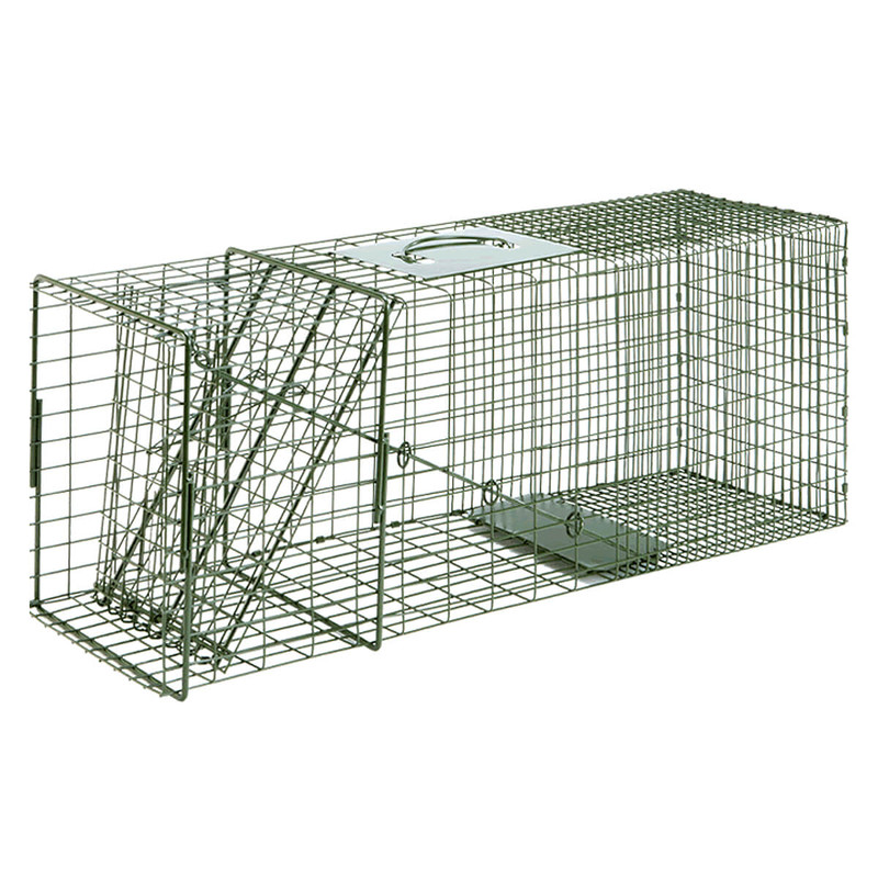 Duke Traps Standard Single Door Cage Trap - #3-1 Racoon/Cat