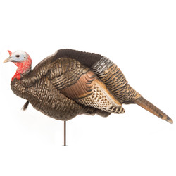 Dave Smith Jake Turkey Decoy