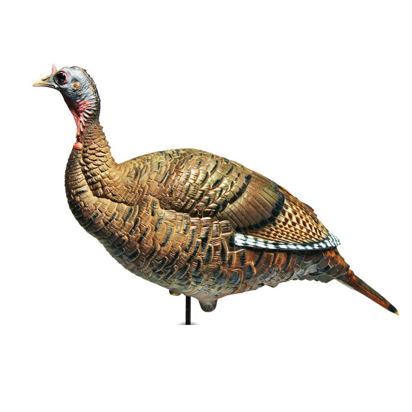 Dave Smith Upright Hen Turkey Decoy