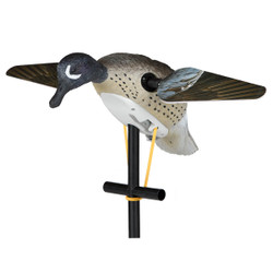 Lucky Duck Blue Wing Teal Duck Decoy