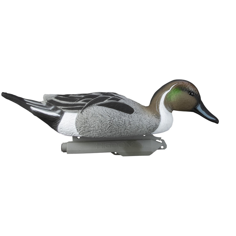 Higdon Standard Pintail Duck Decoys 6 Pack