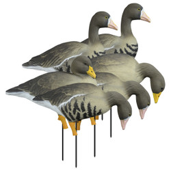 Higdon APEX Full Size Full Body Specklebelly Goose Decoys Variety 6 Pack