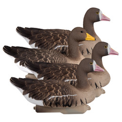 Waterfowl > Decoys > Goose Decoys > White Front/Speck