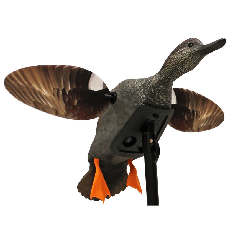 Mojo Elite Mid/Small Size Series Duck Decoys in Gadwall Item Style