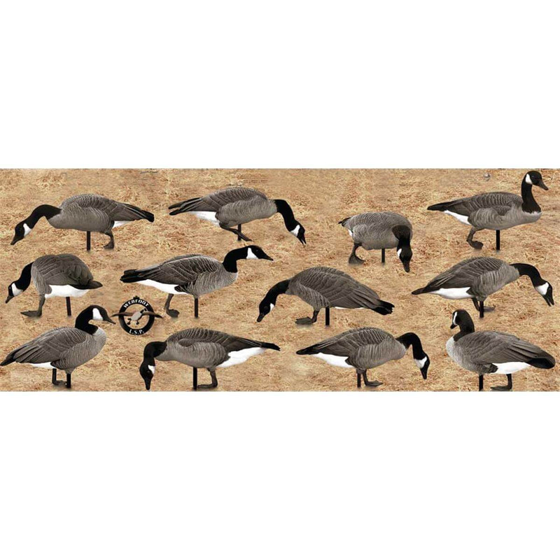 Real Geese Pro Series II Silhouette Canada Goose Decoys 12 Pack
