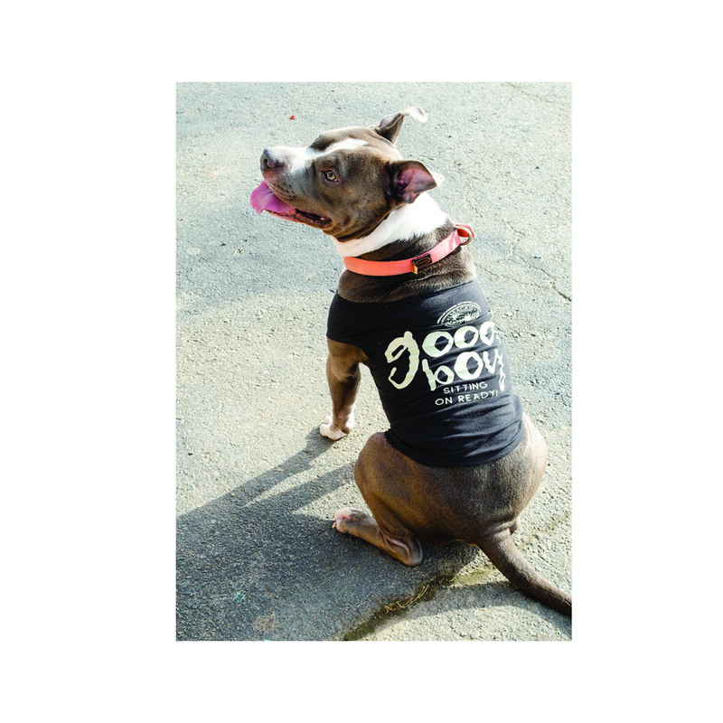 MPW Good Boy Dog Tee in Black Color
